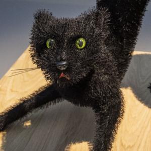 Museum STAAL - De Zwarte Kat van de Wildenborch